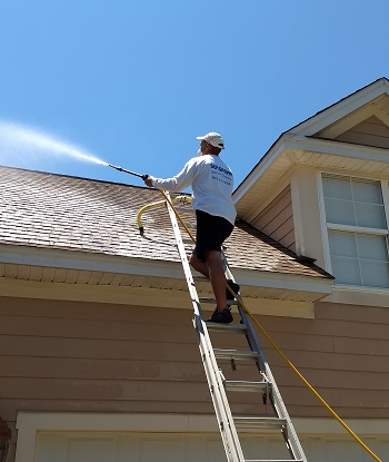 Soft Wash Roof Cleaning No Damage