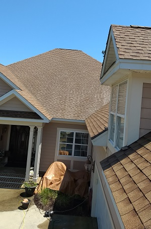 Soft Wash Roof Cleaning Low Pressure