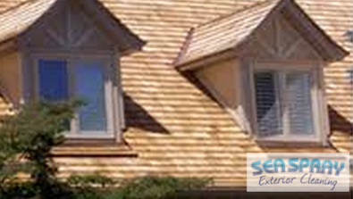 Cedar Roof Cleaning Service