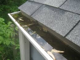 Gutter Cleaning Service Best